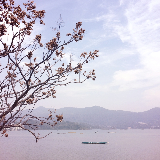 Sai Kung First Impressions - GGG