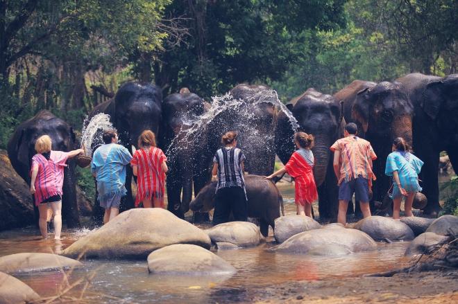 Patara Elephant Farm Experience - GraceGoesGlobal.com