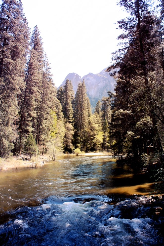 Yosemite National Park - GraceGoesGlobal.com